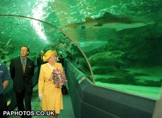 The Queen and the Duke of Edinburgh (left) are confronted by a shark as they walk through the observation tunnel, during their visit to the Blue Planet Aquarium, Ellesmere Port