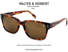 Walter and Herbert Hitchcock Tortoise Shell Sunglasses, Wayfarer, Shells, Brown, Conch Shells, Seashells, Sea Shells, Brown Colors, Snail