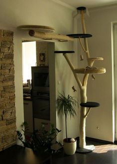 25 Indoor Cat Tree Ideas For Play And Relax   Home Design And Interior #indoorcattoys