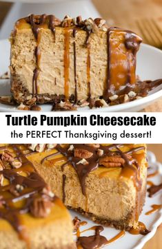 Turtle Pumpkin Cheesecake is the perfect Thanksgiving desserts - plus tips for making the perfect cheesecake! #turtlepumpkincheesecake #pumpkincheesecake #cheesecakerecipe @greenschocolate