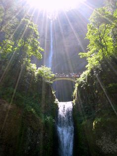 Multnomah Falls in Troutdale Oregon - magnificent sight! This waterfall plummets into a misty, forest grotto. Places To Travel, Places To See, Beautiful World, Beautiful Places, Simply Beautiful, Multnomah Falls Oregon, Les Cascades, Paradis, Vacation Spots