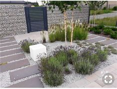 Put lavendar in a rock garden. Small Front Gardens, Back Gardens, Front House Landscaping, Backyard Landscaping, Modern Garden Design, Landscape Design, Gravel Garden, Gravel Pathway, Garden Pool