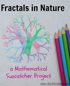 Share it! Science : Fractals in Nature: A Mathematical Suncatcher Project. Get outside, find some amazing patterns, snap some photos, and create awesome suncatchers with this fun STEAM project.