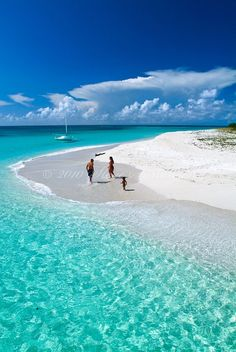 Buck Island, St-Croix (US Virgin Islands) - yes, it really is this beautiful!!!