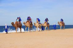 5 Desert Activities in Los Cabos You Need To Try Water Activities, Cabo, Deserts, Campaign, Mexico, Content, Holidays, Adventure, Vacation