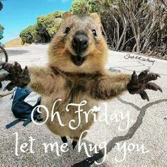 Lol! Big Hugs :D!
