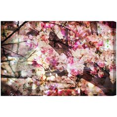 Oliver Gal 'Cherry Woods' Canvas Art at Joss and Main Canvas Art Prints, Canvas Wall Art, Fine Art Prints, Painting Frames, Painting Prints, Tree Wall Decor, Thing 1, Botanical Wall Art, Wood Canvas
