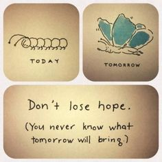 Don't lose hope, you never know what tomorrow will bring.Don't lose hope, you never know what tomorrow will bring. The Words, Cool Words, Great Quotes, Quotes To Live By, Me Quotes, Inspirational Quotes, Qoutes, Motivational Quotes, Daily Quotes