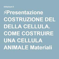 ⚡Presentazione COSTRUZIONE DELLA CELLULA. COME COSTRUIRE UNA CELLULA ANIMALE Materiali utili: Das o pasta di sale, granelli di mais, bottoni o perline possibilmente.