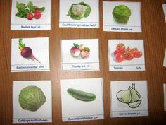 Learn Vegetable Names