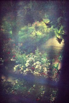 une vue de la chambre de Claude Monet en Giverny, prise en juin 2011 par Bernard Plossu, et exposée en ce moment au Musée des Impressionnismes.  (Source: https://www.facebook.com/photo.php?fbid=467166939967669=a.235012116516487.66934.213364115347954=1 )