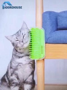 Kitten Accessories, Pet Hammock, Animal Room, Funny Cats And Dogs, Cat Condo, Unique Cats, Cat Room, Cat Behavior, Cat Supplies