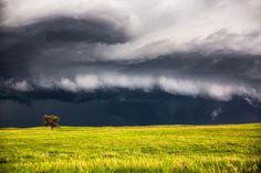 Lone tree (Nebraska), Sean Ramsey (USA) - Daily Dozen for Oct. 6, 2015 — Photos -- National Geographic Your Shot