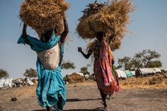 Nuba women trek for many hours into the bush to collect hay and firewood to sell in Kodok market for as little as 20 South Sudanese pounds (£2.64).