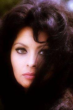 Beautiful Sophia Loren