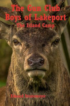 The Gun Club Boys of Lakeport (Illustrated): The Island Camp by Edward Stratemeyer, Paperback | Barnes & Noble®