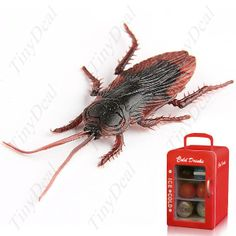 Creative #Soft Cockroach #Pattern Home Decor Refrigerator Fridge Magnet HHI  http://www.tinydeal.com/es/creative-soft-cockroach-pattern-home-decor-fridge-magnet-p-30703.html