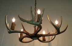 5-light Whitetail Deer Antler Chandelier 23-24 by IdaGlowAntler