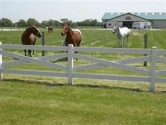 Love this fence.. Maybe 2/3 strands of Electric fence would make it suitable for Mini-Cow/ Horses