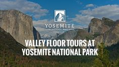 Yosemite Guided Bus Tours are the best way to experience all the wonders that the Park has to offer. Our tours focus on natural history, indigenous peoples, the first non-indigenous settlers, and wildlife.
