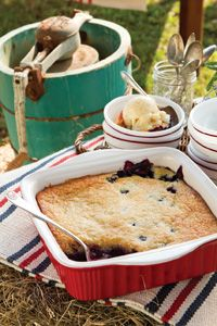Blueberry Cobbler: http://www.tasteofthesouthmagazine.com/recipes/view.php?id=3273