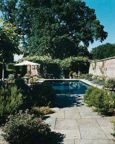 POOL NEWS - Mark D. Sikes: Chic People, Glamorous Places, Stylish Things
