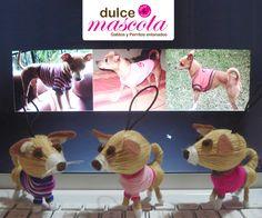 Dog handmade by wool