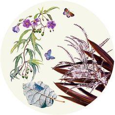 Ti Kouka and Poroporo Tondo Maori Tattoos, Key Tattoos, Skull Tattoos, Foot Tattoos, Sleeve Tattoos, Flower Tattoo Foot, Flower Tattoos, Butterfly Tattoos, Galloway