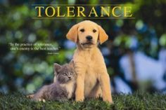 Tolerance... if only we could have a little more of this towards those who are different... as long as people have a good and healthy heart.