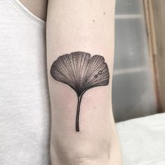Ginkgo leaf tattoo