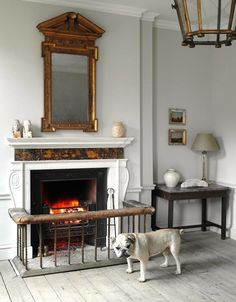 Bulldog, At Home with Will Fisher, London's Antiques Whisperer