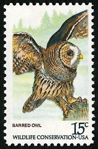 owl postage stamps - Google Search