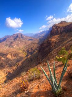 Mountains of Gran Canaria - Photography By Valerie Mellema