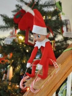 Racing Down Bannisters In Candy Cane Sleds - Elf On The Shelf Ideas - Photos