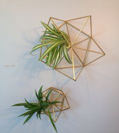2014 Set of 2 - Geometric air plant wall hangers - Brass Planter - Finnish himmeli mobile - mother and child