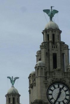 On the Royal Liver Building