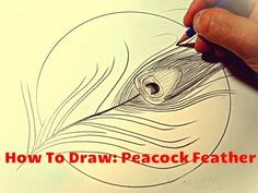 How To Draw A Peacock Feather - video tutorial