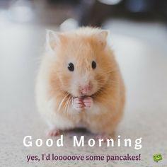 Good Morning. Yes, I'd looooove some pancakes!