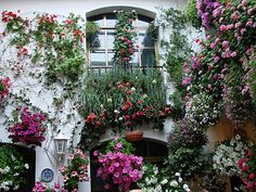 outdoor home decorating with flowers, window boxes and flower beds Flower Beds, Flower Wall, Beautiful Gardens, Beautiful Flowers, Beautiful Life, Exterior Design, Interior And Exterior, Spanish Garden, Window Box Flowers