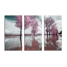 CARA SAVEN | Trees Set of Three Canvases - Homeware - 5rooms.com Tree Canvas, 3 Piece, Trees, Design Inspiration, Wall Art, Canvases, Photography, Painting, Outdoor
