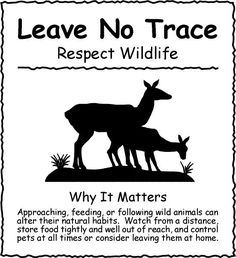 respect wildlife Leave No Trace has been a large part of San Juan Safaris right from the start. Bravo!