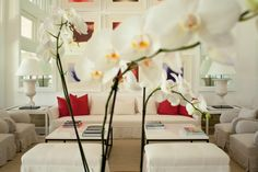 Project 1 - Luis Bustamante Exterior, Table Decorations, Luxury, Architecture, Furniture, Living Rooms, Designers, Home Decor, Space