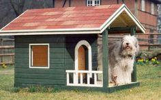 Hundehütte deluxe: Bauen Sie ihrem Vierbeiner eine Villa