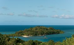 Dolphin Island in Fiji