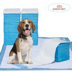 Pet Training Puppy Pads, 34' x 28' XXL-Large, Ultra Absorbent - All Day Premium Dog Pads - 20 Count, 42 Count by Petphabet >>> You can get more details by clicking on the image. (This is an affiliate link and I receive a commission for the sales)