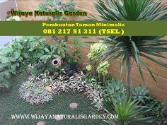 Hubungi : •CALL / WA : 081 217 51 311  ( TSEL ) •CALL / SMS : 0822 3141 4231  ( TSEL ) www.wijayanaturalisgarden.com
