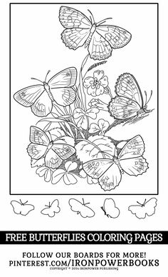 FREE Printable Butterfly Coloring Page for kids | Visit http://www.amazon.com/Butterfly-Coloring-Pages-Butterflies-Adults/dp/1500501255 with over 100 butterflies to color. | Please use freely for personal non-commercial use
