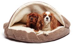 Cave-style bed envelops your dog in plush fur