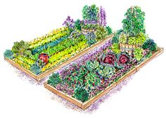 Beautiful veggie garden plans to help you decide what to grow - I'm inspired by the Italian-style garden :)