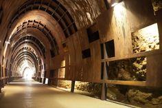 walking tunnel